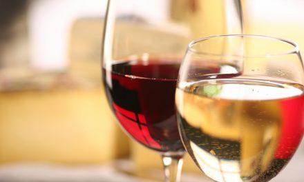 Vin de Madiran : faire des dégustations